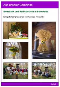 Gemeindebrief Borkheide/Borkwalde