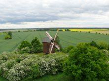 Siegerfoto Borner Mühle