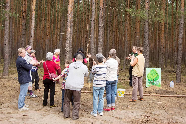 Borkwalder Kulturverein Zauche e.V. pflanzt Baum des Jahres 2015